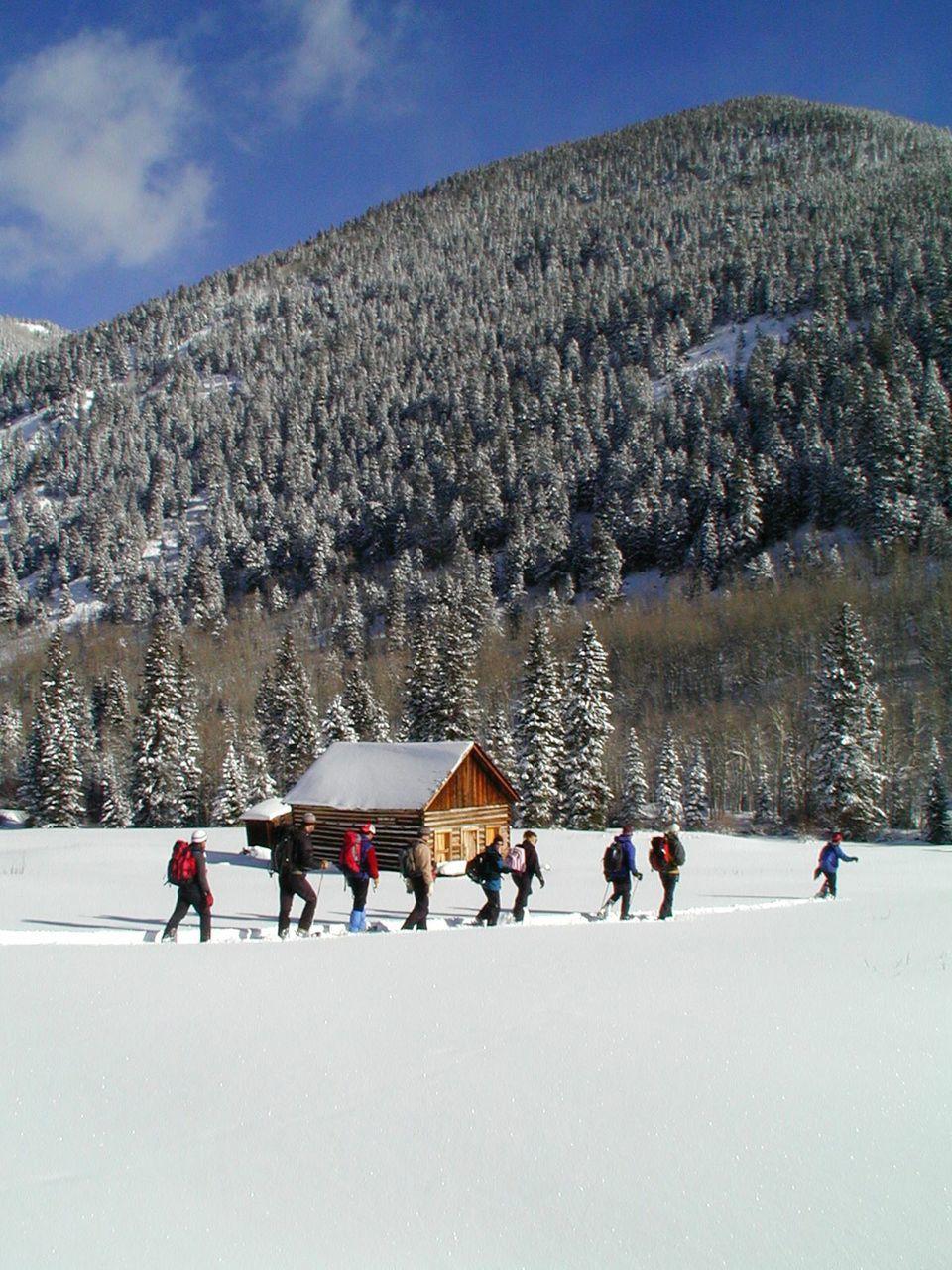1.SnowShoe.jpg