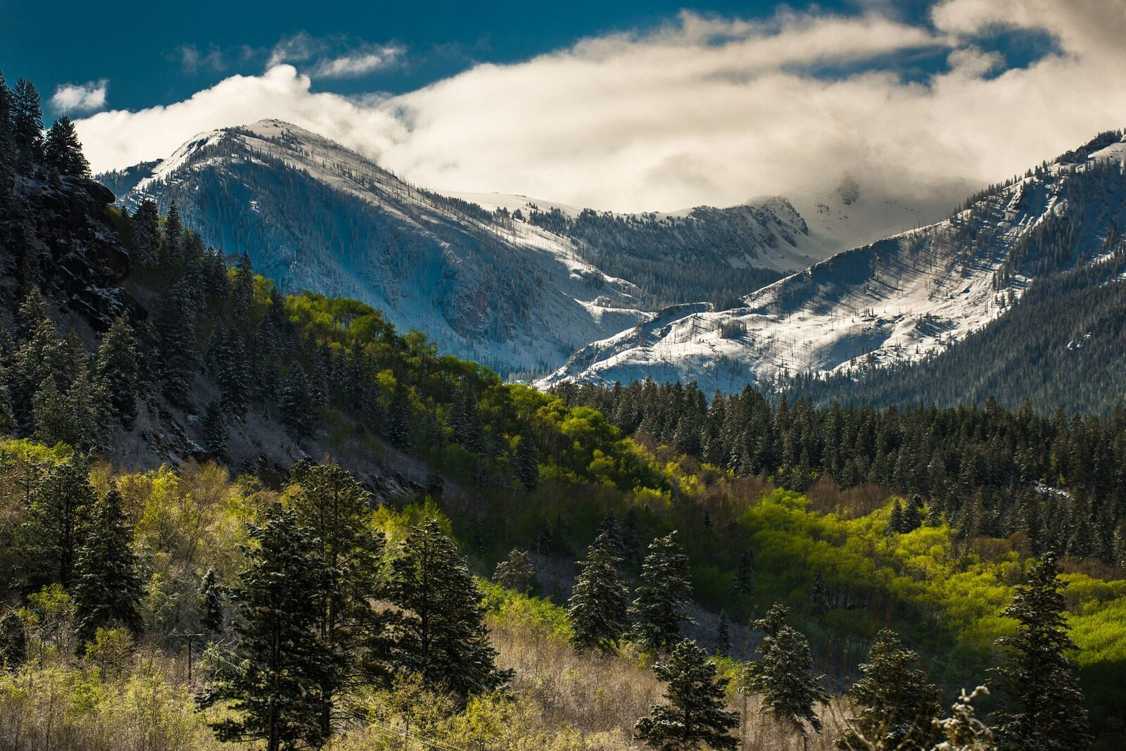 Everything You Need to Know About Independence Pass | Aspen CO Chamber