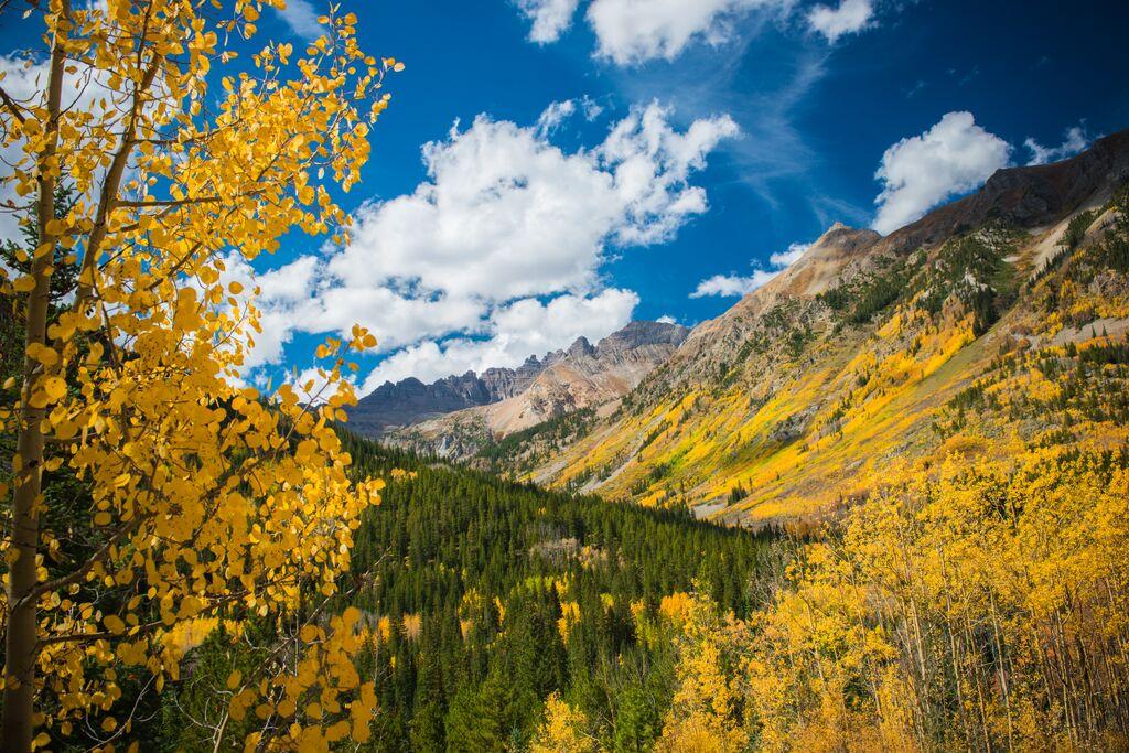 Fall.Aspen.CooperCreek.jpeg
