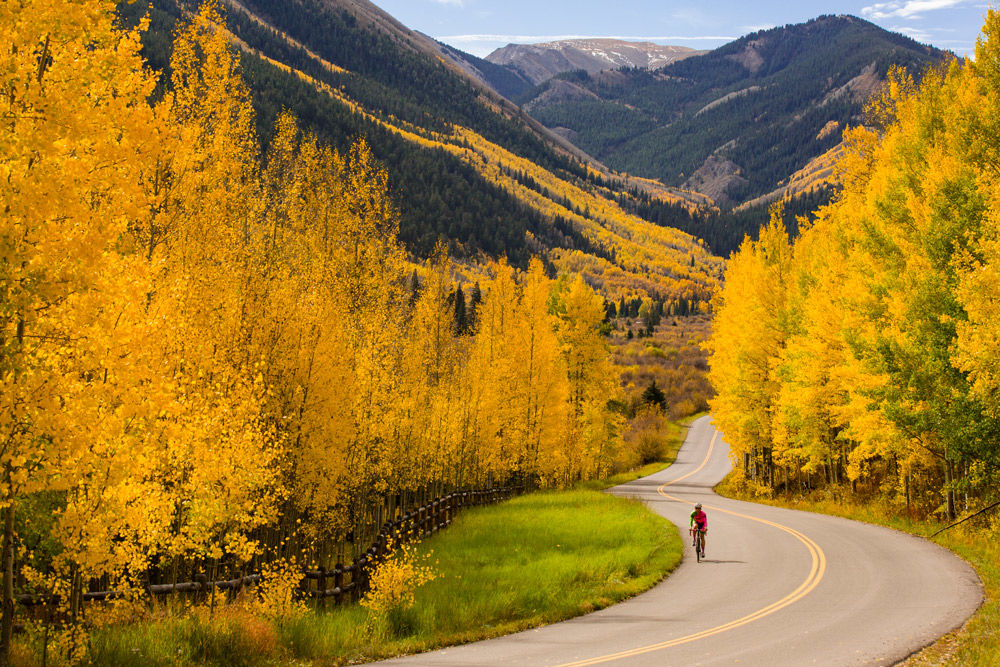 Fall foliage aspen co chamber 3 scenic driving roads maroon creek road castle creek road and independence pass are all available for those that prefer to enjoy the golden aspens sciox Choice Image