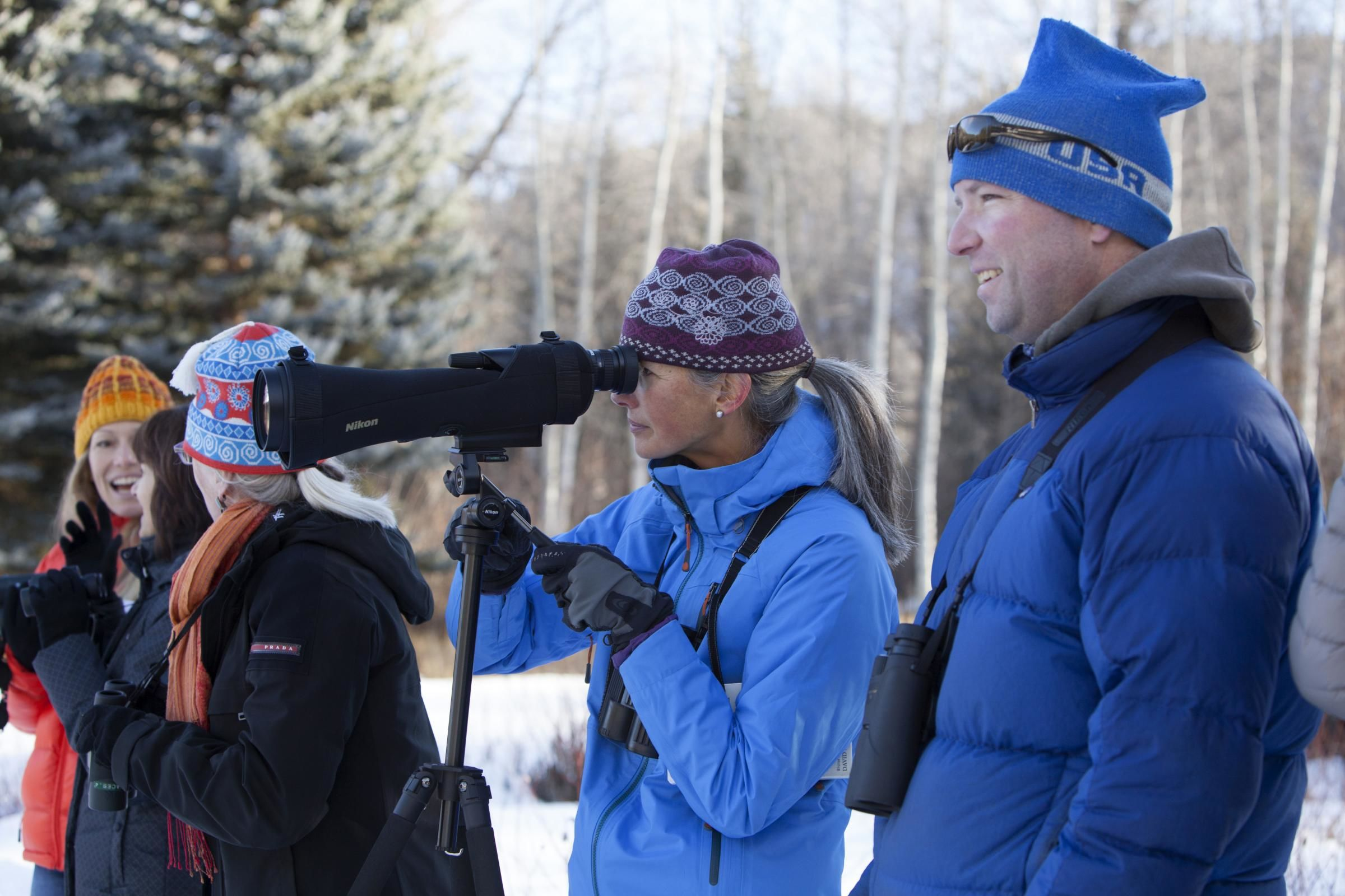 for more cbc experience join the mid valley audobon christmas bird count hosted by roaring fork audobon on saturday december 16 contact ton mcconnell for - Audubon Christmas Bird Count