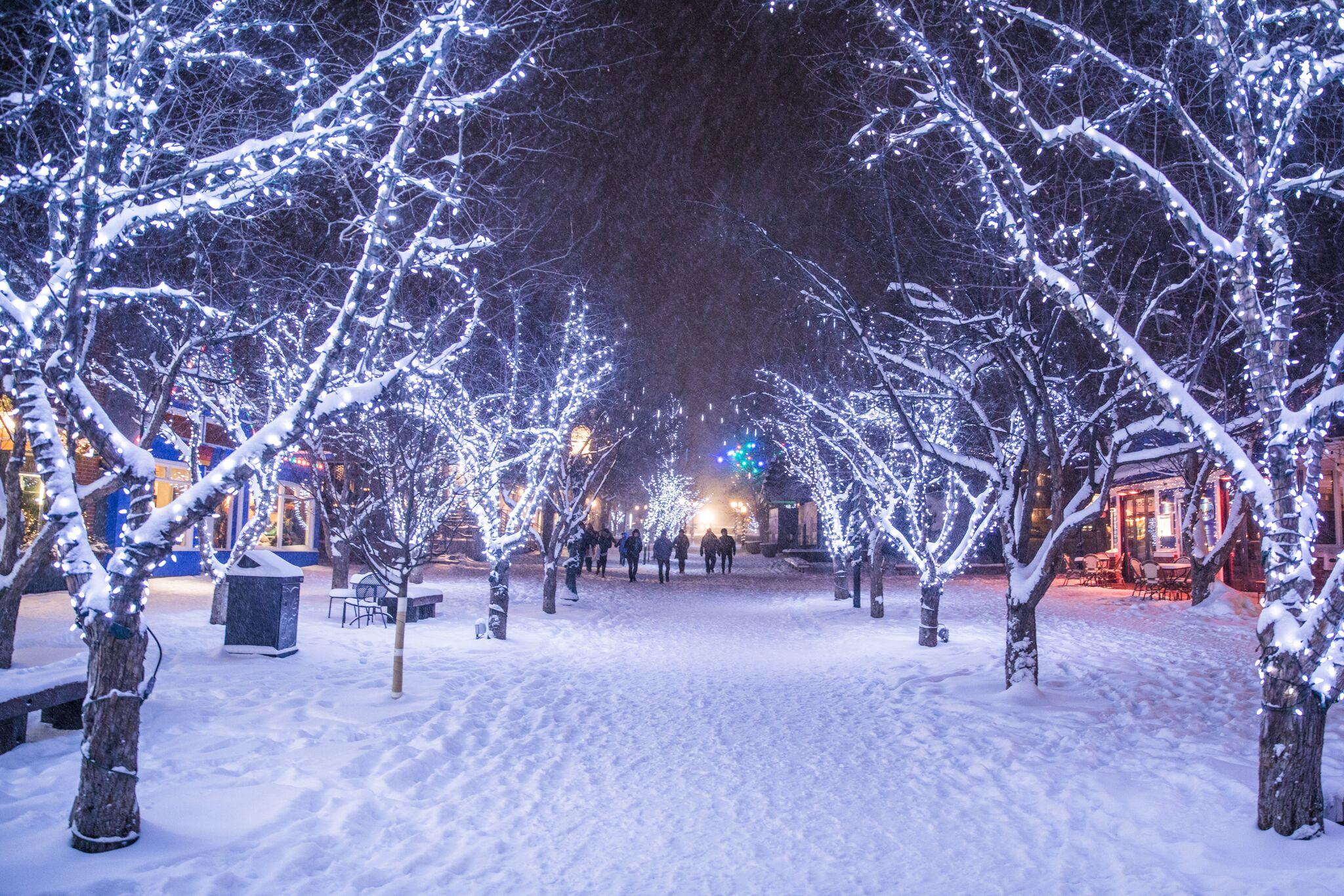 winter.nightlights.downtownsnow.redmtnproductions.jpeg